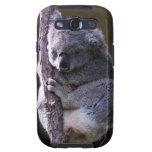 Koala in Tree Phone Case Samsung Galaxy SIII Case