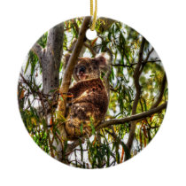 KOALA IN TREE QUEENSLAND AUSTRALIA ART EFFECTS CERAMIC ORNAMENT