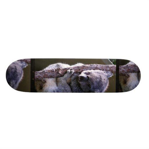 Koala in Tree Skateboard