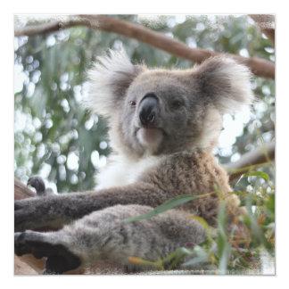 Koala Invitations