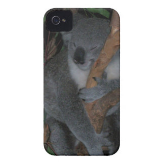 Koala iPhone 4 Cover