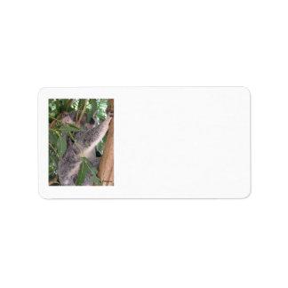 Koala Label