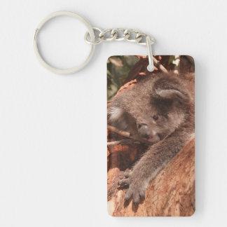 Koala linda 1214 llavero rectangular acrílico a una cara