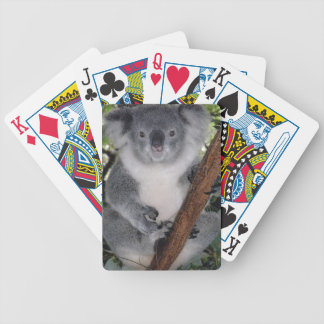 Koala linda Aussi de Zazzle del destino interior Barajas De Cartas