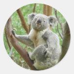 Koala linda pegatinas redondas