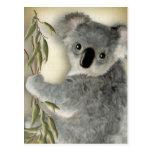 Koala linda postales