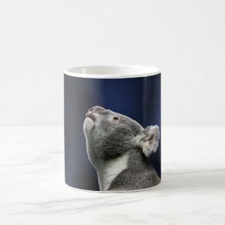 Koala linda que mira para arriba en maravilla tazas de café