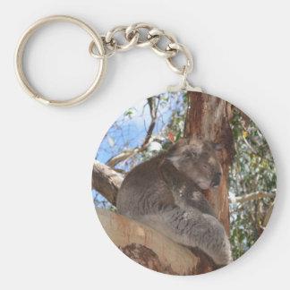 Koala Llavero
