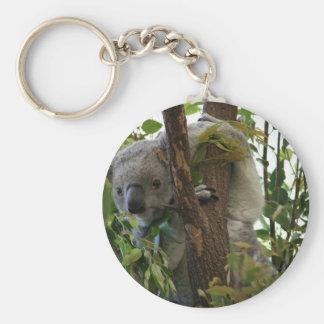 Koala Llavero Redondo Tipo Pin