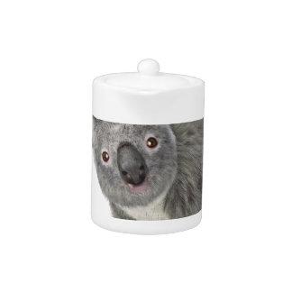 Koala Looking Quizzical Teapot