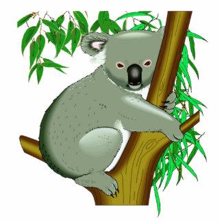 Koala - marsupial de vida del árbol australiano escultura fotografica