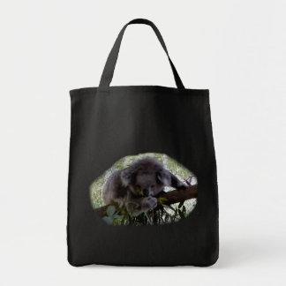 Koala mimosa bolsa lienzo