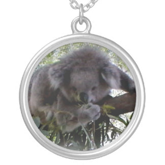 Koala mimosa colgante redondo