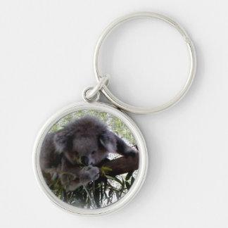 Koala mimosa llaveros personalizados