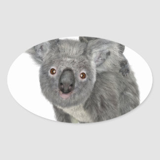 Koala Mother and Child Oval Sticker