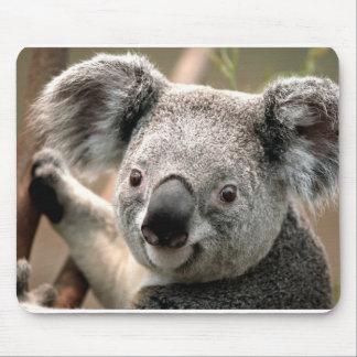 Koala Mouse Pads