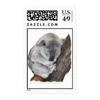 Koala Napping Stamp