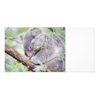 koala painted swirls  version sm c.jpg photo card