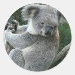 Koala Pegatinas Redondas