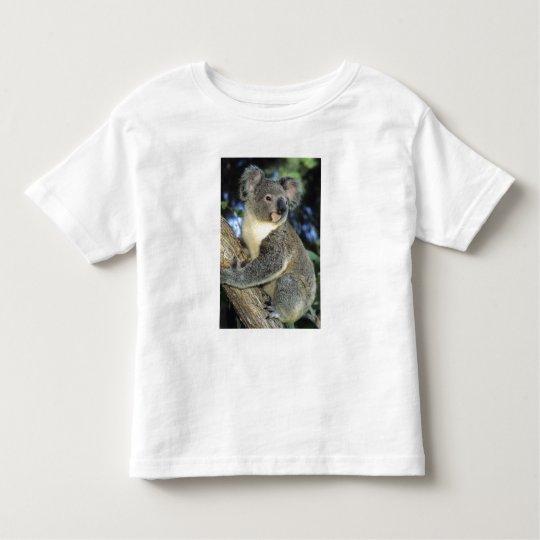 Koala, Phascolarctos cinereus), Australia, Toddler T-shirt