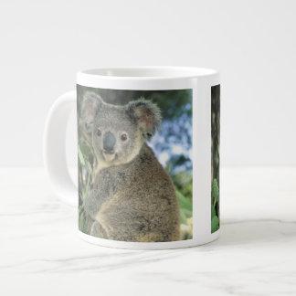 Koala, Phascolarctos cinereus), endangered, Large Coffee Mug