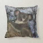 Koala Pillows