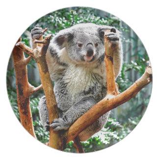 Koala Plato De Cena