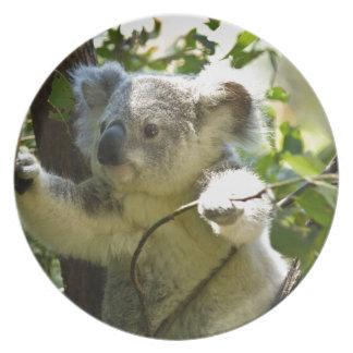 koala platos para fiestas