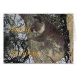 Koala que abraza la tarjeta de cumpleaños del árbo