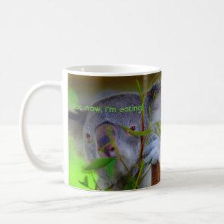 Koala que come la taza