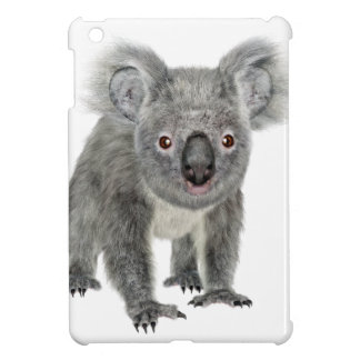 Koala que mira adelante