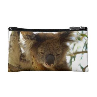 Koala salvaje que duerme en el árbol de eucalipto,