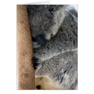 koala sleepy card