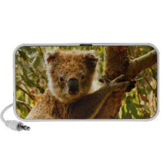 Koala iPhone Speakers