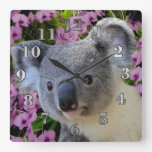 Koala Square Wall Clock
