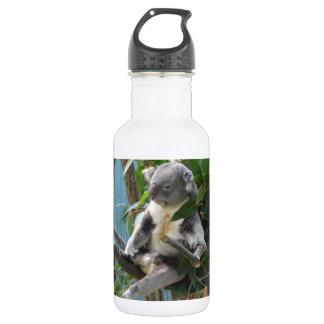- Koala Stainless Steel Water Bottle