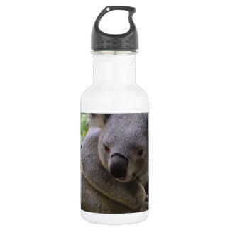 Koala Stainless Steel Water Bottle