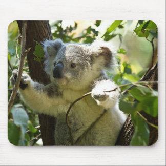 koala tapetes de ratón