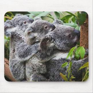 Koala tres en un árbol tapete de ratón