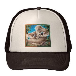 Koala y gorra del bebé