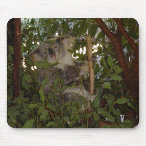 Koala y joey tapete de ratón