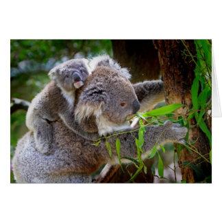 Koalas de la mamá y del bebé tarjeta de felicitación