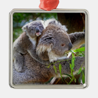 Koalas lindas ornamentos para reyes magos