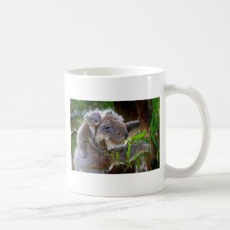 Koalas lindas taza básica blanca