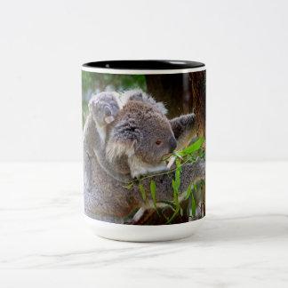 Koalas lindas taza de dos tonos