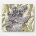 Koalas Tapetes De Raton