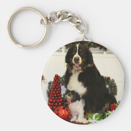 Kobus and Grover - Eiting - Photo 4 Key Chains