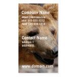 Kodiak Bear Business Cards