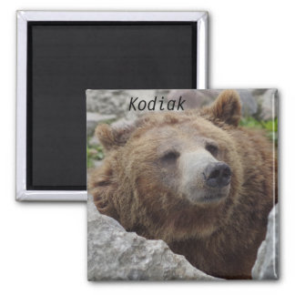 Kodiak Bear Magnet