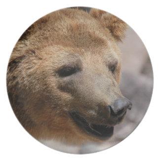 Kodiak Bear Plate